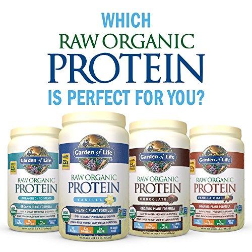 Buy Garden Of Life Organic Vegan Protein Powder Vanilla 22 Oz Special Discount And Free Shipping