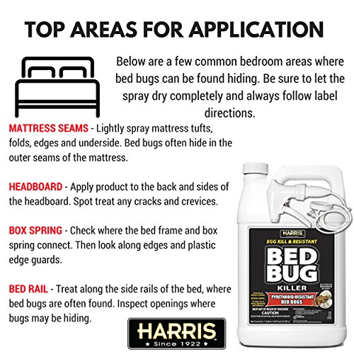 Buy Harris Toughest Bed Bug Killer Liquid Spray 1 Gallon Special Discount And Free Shipping